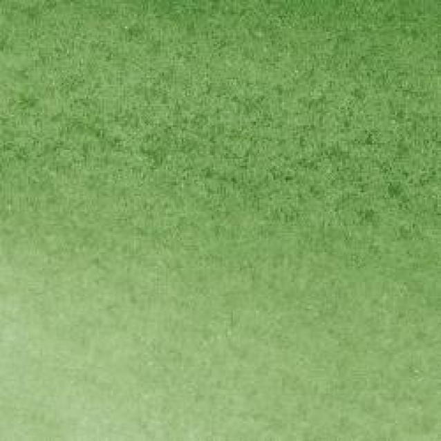 Winsor & Newton Μαρκαδόρος Promarker Watercolour 311 Hookers Green