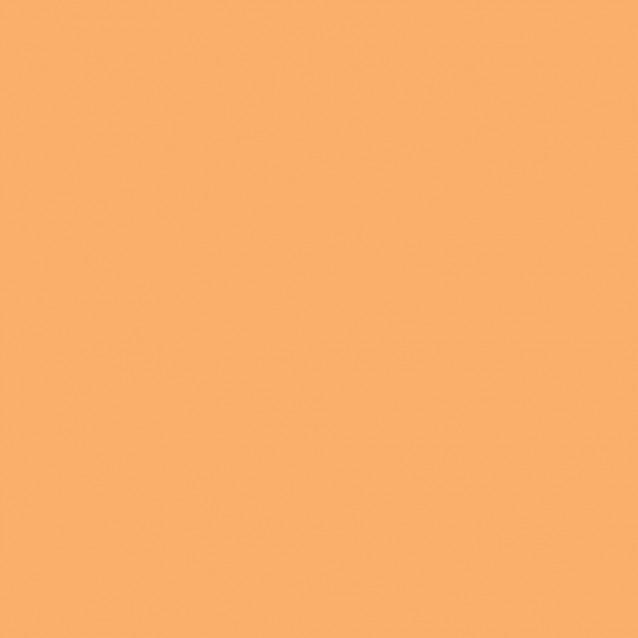 Winsor & Newton Μαρκαδόρος Promarker Brush O538 Apricot