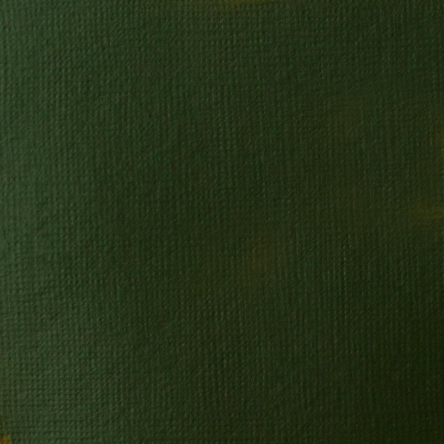 Liquitex 118 ml Basics Acrylic 224 Hookers Green Hue