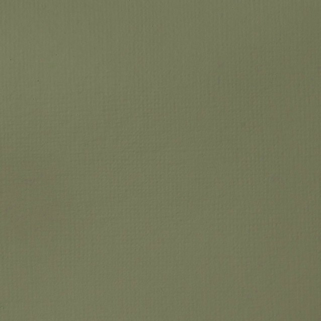 Liquitex Basics 118ml Acrylic 205 Green Gray