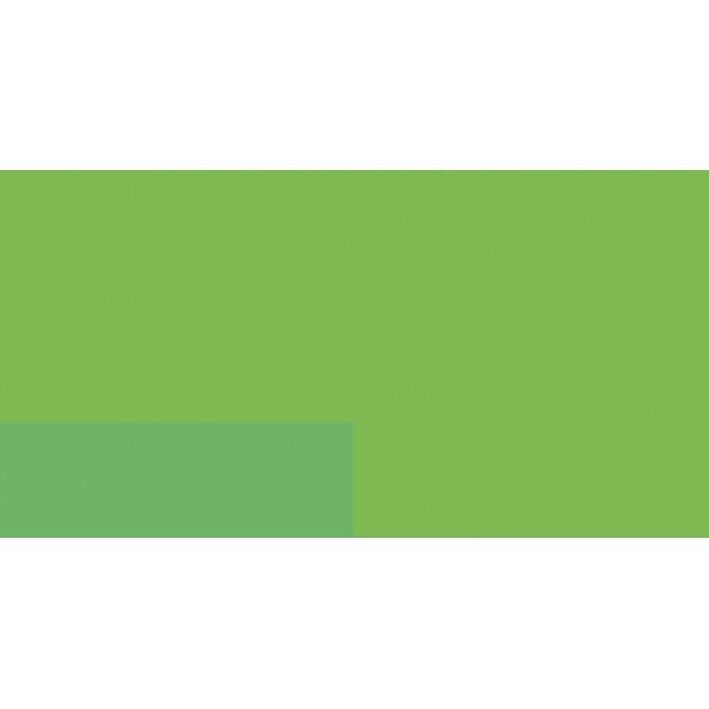 Lefranc & Bourgeois 125ml Flashe Acrylic 565 Fluorescent Green