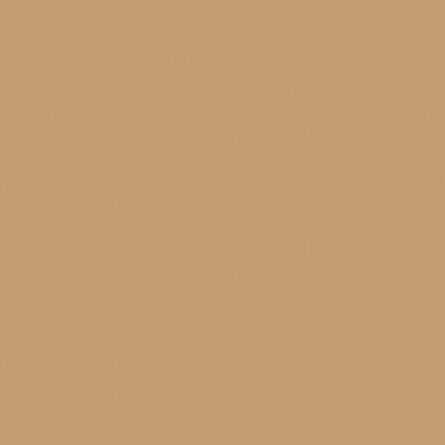Winsor & Newton Μαρκαδόρος Promarker O727 Caramel