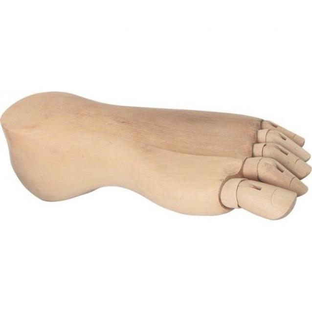 Πόδι Ανδρικό Δεξί 25cm